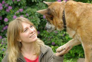 Sterbebegleitung bei Haustieren